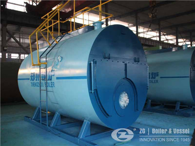 pure steam boiler