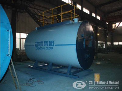 EFB Fuel CFB Power Plant boiler in Asia
