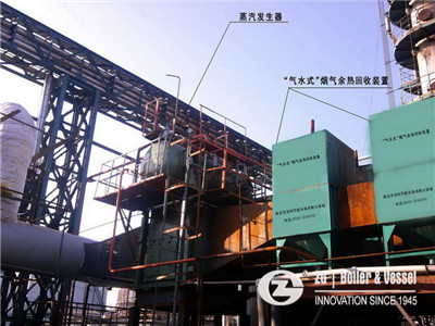 textile factroy need 2 tons biomass steam boiler