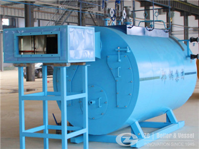 coal fired package boiler in south africa