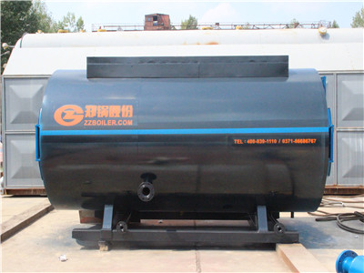rice hulls fired steam boiler